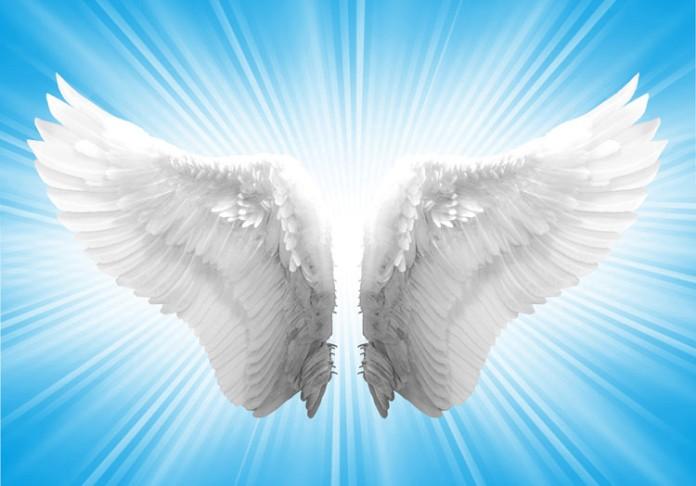 angels-wings-696x486